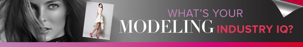 What is your modeling industry IQ?